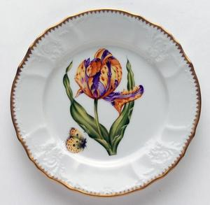 Old Master Tulips ~ Purple & Yellow Tulip Salad Plate by Anna Weatherley