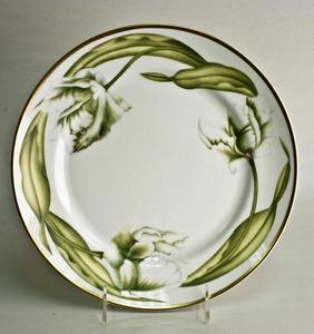 White Tulips ~ Dinner Plate by Anna Weatherley