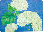 White Hydrangea Placemats Set of Four