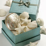 Gianna Rose Couture Seashell Soap with Sand Dollar